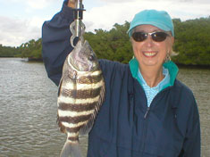Sheepshead caught on a recent (December 2006) Fins N Grins Marco Island Charter Fishing Trip