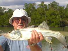 Snook caught on a recent (December 2006) Fins N Grins Marco Island Charter Fishing Trip