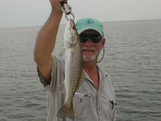 Spotted Sea Trout,caught while fishing the flats - Marco Island Fishing Charters