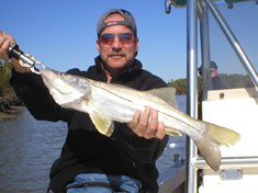 Large Snook, caught up in Buttonwood bay - Marco Island Fishing Charters