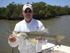 Throwing jigs up towards the mangrove trees lands anoter big Snook in the Blackwater River - Marco Island Fishing Charters