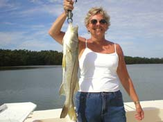 Beautiful Snook caught in Palm Bay - Marco Island Fishing Charters