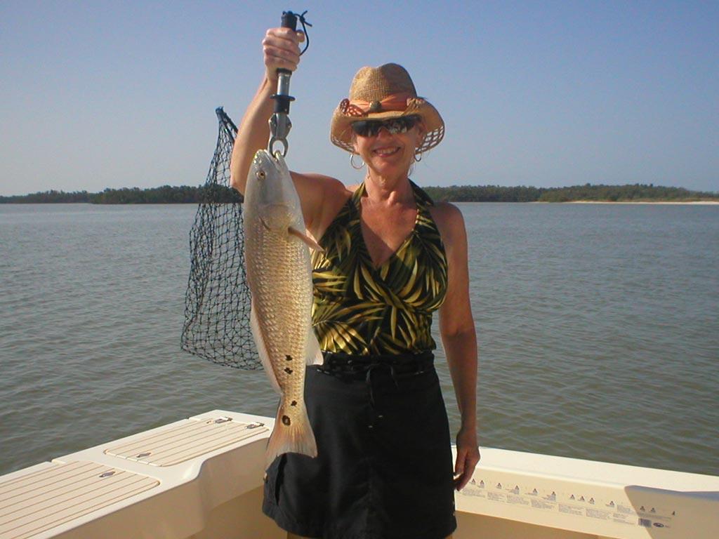 marco island fishing photos fins n grins